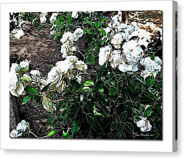 Canvas Print featuring the photograph White Roses by Joan  Minchak
