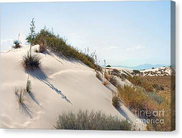 White Sands Icing Canvas Print by John Kelly