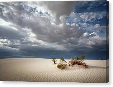 White Sands Canvas Print by James Barber