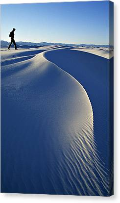 White Sands National Park, New Mexico Canvas Print by Dawn Kish