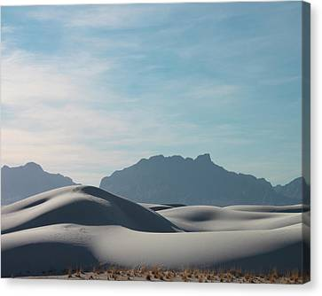 Canvas Print featuring the painting White Sands Natural Anatomy  by Jack Pumphrey