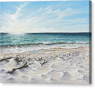 White Sands Of Tiger Tail Canvas Print by Joe Mandrick