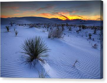 White Sands Sunset Canvas Print by Peter Tellone