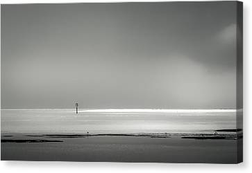 White Sandy Shore- B/w Canvas Print by Marvin Spates