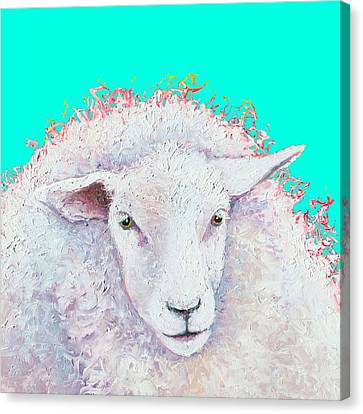 White Sheep On Turquoise Background Canvas Print