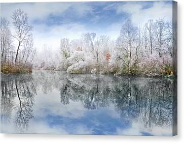 White Space Canvas Print by Philippe Sainte-Laudy