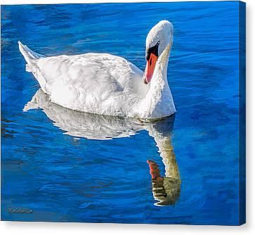 White Swan Canvas Print by LeeAnn McLaneGoetz McLaneGoetzStudioLLCcom