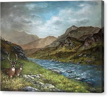 White Tail Meadow Canvas Print by David Jansen