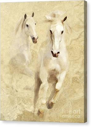 White Thunder Canvas Print by Melinda Hughes-Berland