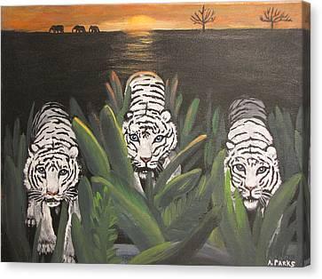 White Tiger Encounter Canvas Print by Aleta Parks