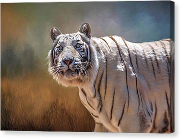 Tiger Canvas Print - White Tiger Portrait by Donna Kennedy