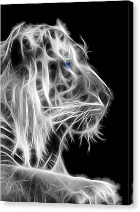 Canvas Print featuring the photograph White Tiger by Shane Bechler