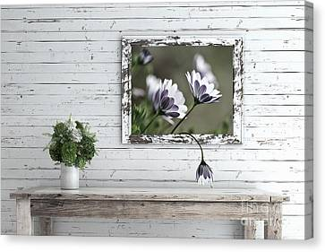 Canvas Print featuring the photograph White Timber Cottage By Kaye Menner by Kaye Menner