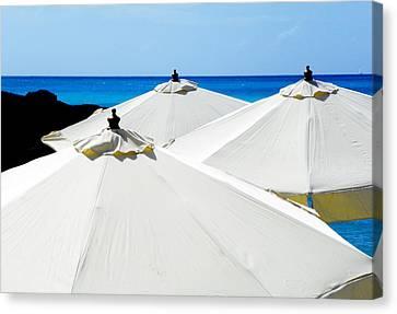 White Umbrellas Canvas Print by Karen Wiles