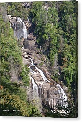 White Water Falls Nc Canvas Print by Lane Owen