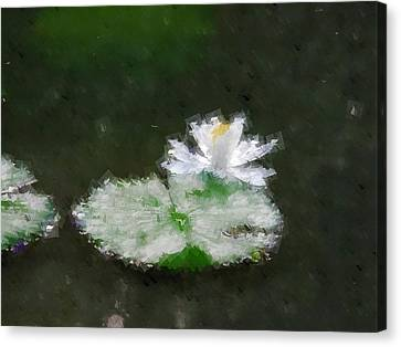 White Water Lily And Leaf Canvas Print