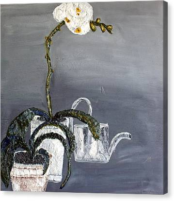 White Wild Orchid Canvas Print
