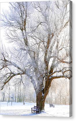 White Winter Tree Canvas Print by Svetlana Sewell