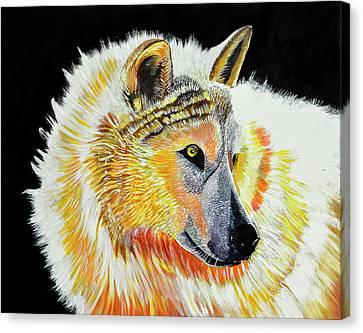 White Wolf Canvas Print by Susan Robinson