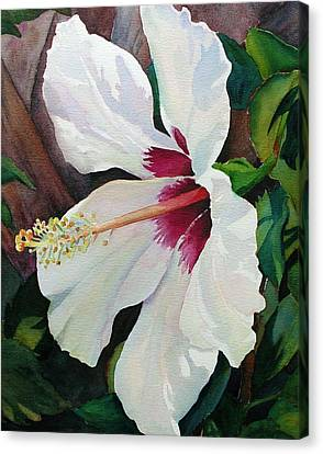 Canvas Print featuring the painting White Wonder by Judy Mercer