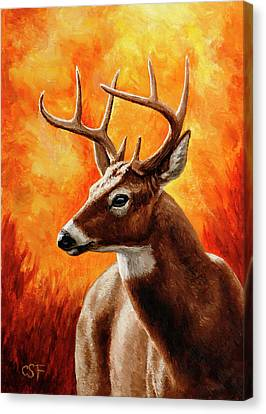 North American Wildlife Canvas Print - Whitetail Buck Portrait by Crista Forest