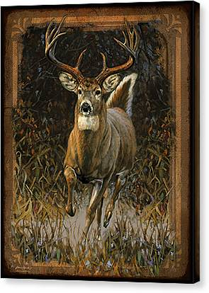 Whitetail Deer Canvas Print by JQ Licensing