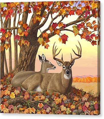 Whitetail Deer - Hilltop Retreat Canvas Print