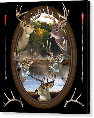 Whitetail Dreams Canvas Print by Shane Bechler