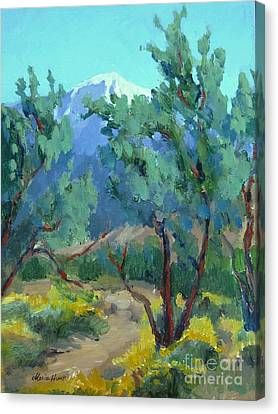 Whitewater Preserve Palm Springs Canvas Print by Maria Hunt