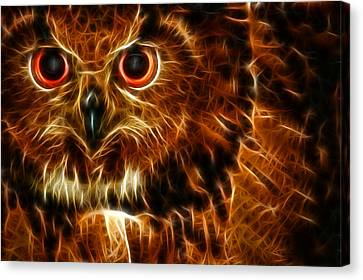 Whoo Canvas Print by Joetta West