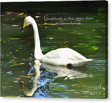 Canvas Print featuring the painting Whooper Swan Gratitude by Diane E Berry