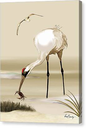 Whooping Crane Canvas Print by Anne Beverley-Stamps
