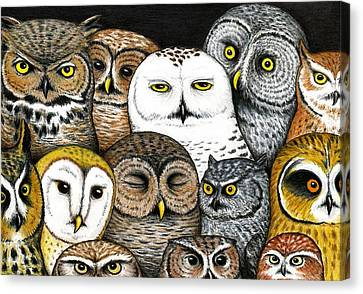 Who's Hoo Canvas Print by Don McMahon