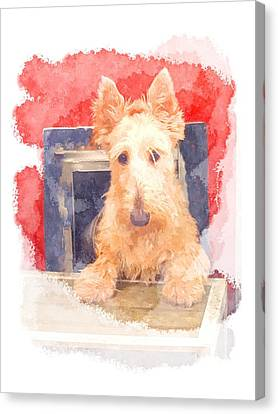 Whos That Dog In The Window? Canvas Print
