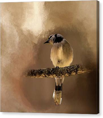 Who's There? Canvas Print by Cyndy Doty