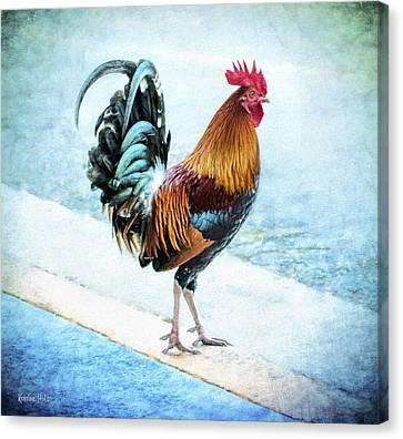 Attune Canvas Print - Why Did The Chicken... by Korrine Holt
