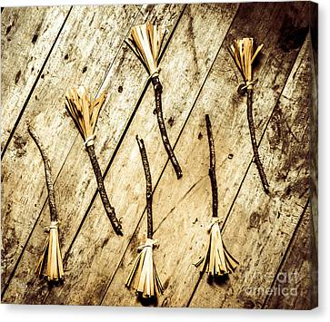 Magic Canvas Print - Wicked Witch Broomsticks by Jorgo Photography - Wall Art Gallery