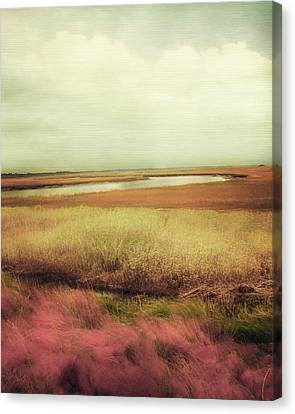 Of Color Canvas Print - Wide Open Spaces by Amy Tyler