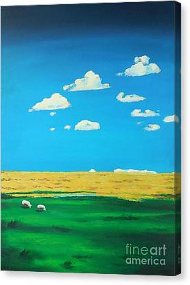 Wide Open Spaces And A Big Blue Sky Canvas Print