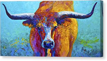 Western Canvas Print - Widespread - Texas Longhorn by Marion Rose
