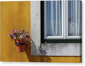 Window With A Vase Canvas Print