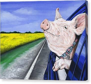 Swine Canvas Print - Wilbur by Twyla Francois