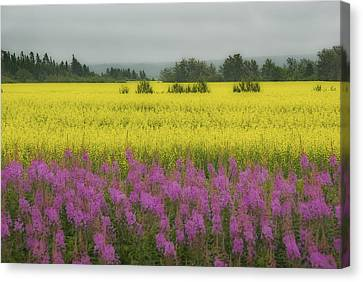 Wild And Colourful - Couleurs Sauvages  Canvas Print