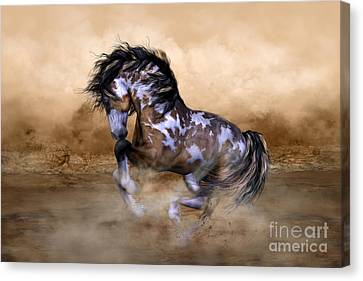 Wild And Free Horse Art Canvas Print by Shanina Conway