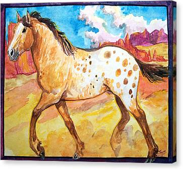 Wild Appaloosa Horse Canvas Print by Jenn Cunningham