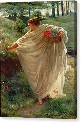 Wild Blossoms Canvas Print by Sir Edward John Poynter