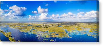 Wild Blue Yonder Canvas Print by Mark Andrew Thomas