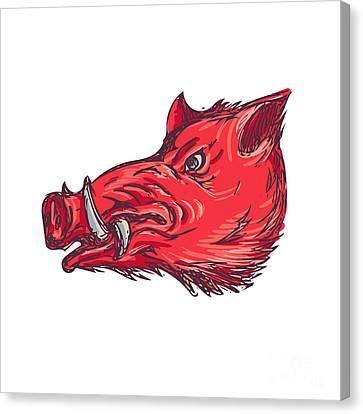 Wild Boar Razorback Head Side Drawing Canvas Print by Aloysius Patrimonio