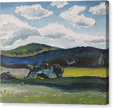 Wild Bushes Canvas Print by Francois Fournier