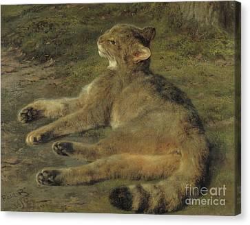 Wild Cat, 1850 Canvas Print by Rosa Bonheur